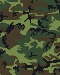 Wallpaper Camouflage